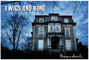 Twigs and Bone flyer